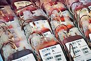 Nederland, Nijmegen, 11-3-2009Zakjes bloed van de bloedbank sanquin. Foto: Flip Franssen