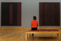 """© Licensed to London News Pictures. 15/10/2020. LONDON, UK.  London, UK. 15 October 2020. A staff member walks by works """" on maroon"""", 1958 - 1959, by Mark Rothko. The works are part of new displays in Tate Britain's three collection routes: Rothko and Turner (a new route to celebrate 50 years since Mark Rothko first gave Tate his iconic Seagram Murals to join paintings he so admired by JMW Turner), British Art 1540-1920 and British Art 1930-Now.  Visitors may book online for free to visit the museum.  Photo credit: Stephen Chung/LNP"""