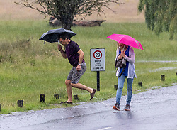 Licensed to London News Pictures. 12/07/2021. London, UK. Walkers get caught in torrential rain in Richmond Park, southwest London this afternoon with roads and pavements becoming quickly flooded as the Met Office issue yellow weather warnings for heavy rain and thunderstorms which may cause disruption to travel and flooding. However, sunshine and warm weather is predicted for the rest of the week with highs of 26c for the weekend.. Photo credit: Alex Lentati/LNP
