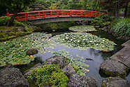 Japanese Garden Images