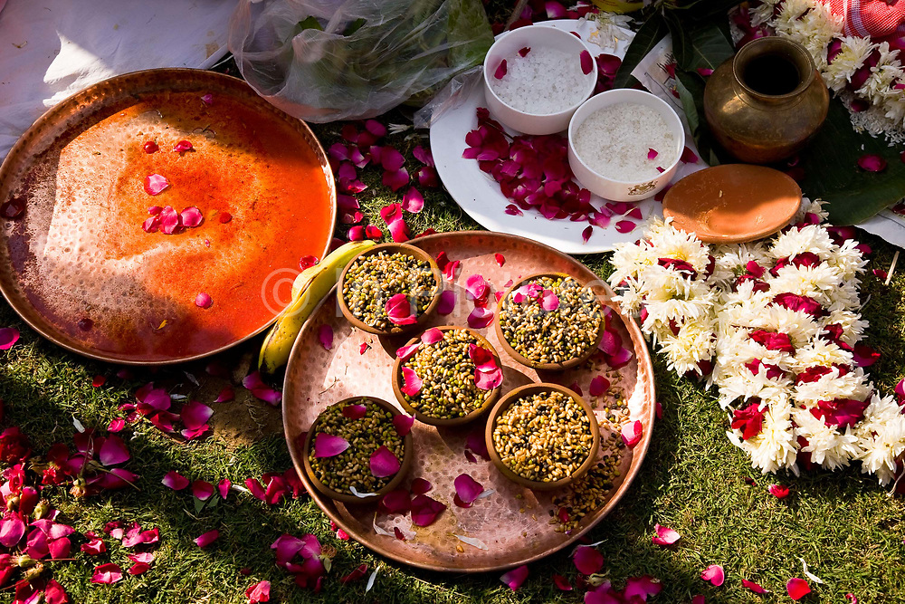 During the course of a Hindu wedding ceremony, flower petals, and other offerings, such as Turmeric, sandlewood, salt, rice, bananas and many other ingredients accumulate on the ground surrounding the wedding couple as part of the marriage ritual, Neemrana Fort Palace, Rajasthan, India.