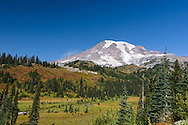 View of Mt. Rainier from Paradise Valley in Mount Rainier National Park, Washington State, USA