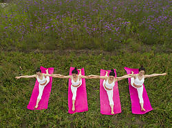 June 18, 2017 - Taizhou, Taizhou, China - Taizhou, CHINA-June 18 2017: (EDITORIAL USE ONLY. CHINA OUT) Women practice yoga in blooming flower fields in Taizhou, east China's Jiangsu Province, June 18th, 2017, marking the International Yoga Day. (Credit Image: © SIPA Asia via ZUMA Wire)