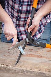 Sharpening the blades of hand shears