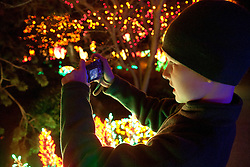 North America, United States, Washington, Bellevue, Garden d'Lights holiday display at Bellevue Botanical Garden.  MR