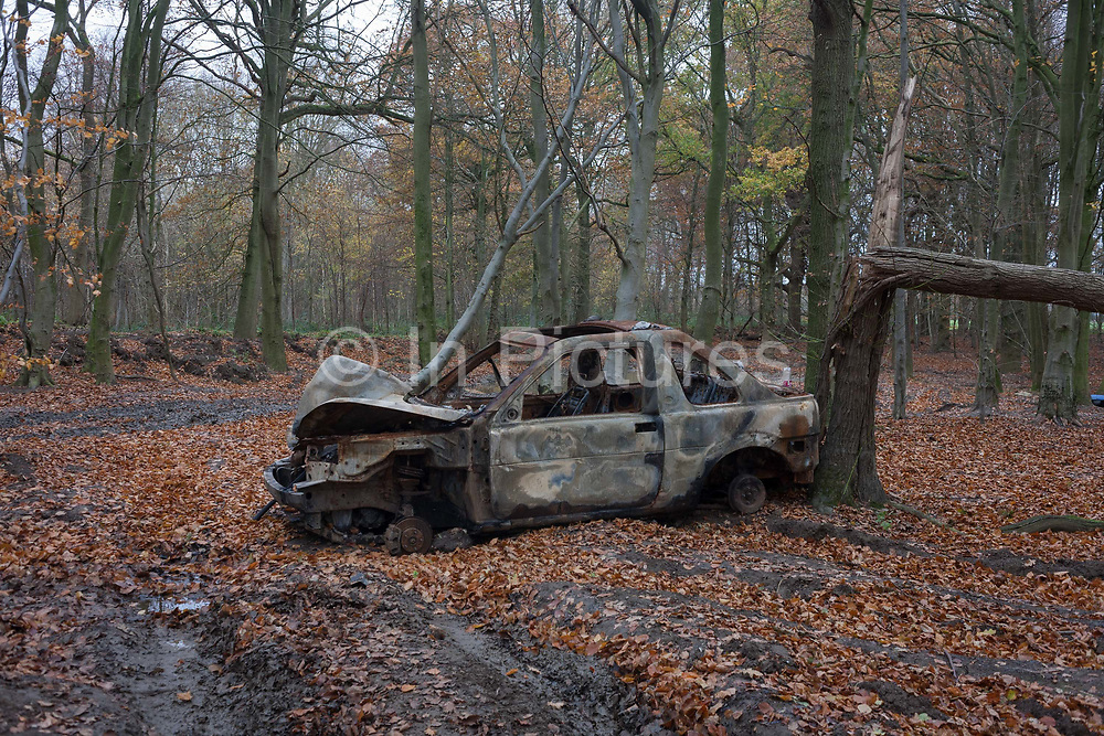 A burned-out car found abandoned by unknown vandals on 27th November 2016, in woodland near Hollingbourne, Kent, England. Fly-tipping of industrial and domestic waste plus stolen vehicles is a major problem for rural councils. It is the responsibility for councils to remove dumped vehicles from roads and occupied land but vehicles on private land, including National Trust, Woodland Trust, Moat or West Kent Housing Association parking areas, should be reported to the landowner.