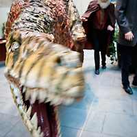 Dinomania at World Museum Liverpool