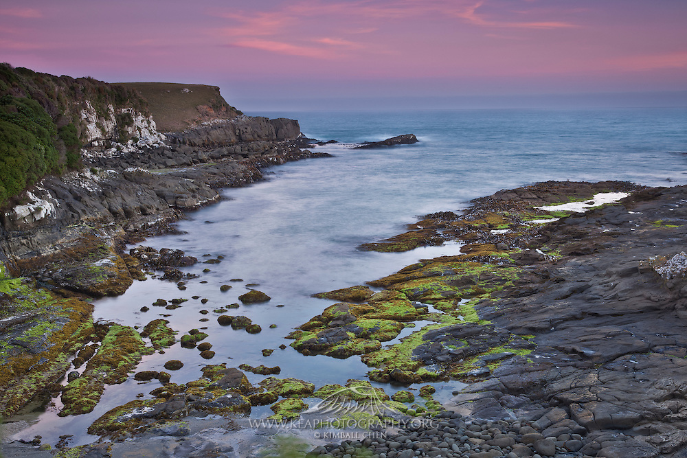 Te Rere Scientific Reserve, pink sunset glow at low tide, esposing the beautiful green and orange vegetation on the rocks, Catlins, New Zealand