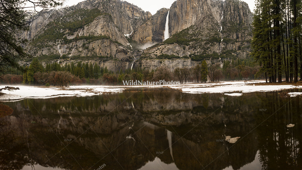 Yosemite Falls in winter with reflections, Yosemite National Park, California