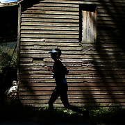 A competitor runs past an old barn during the run leg of the Paradise Triathlon and Duathlon series, Paradise, Glenorchy, South Island, New Zealand. 18th February 2012. Photo Tim Clayton