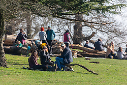 """© Licensed to London News Pictures. 27/02/2021. London, UK. Walkers rest in the sunshine in Richmond Park, South West London this afternoon as weather forecasters predict a mild and sunny weekend. This week, Prime Minister Boris Jonson announced his """"Roadmap Map' out of Lockdown with a gradual unlocking of Covid-19 restrictions over the next few months. Photo credit: Alex Lentati/LNP"""