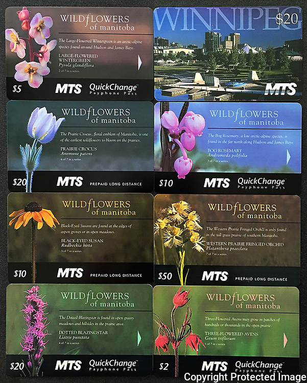PRODUCT: Pay Phone cards<br /> TITLE: Wildflowers of Manitoba / Winnipeg Skyline<br /> CLIENT: MTS