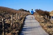 Harlopen door de Haagse duinen.   Running through the dunes of The Hague.