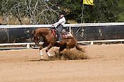 Israel, Kibbutz Alonim, Israeli Equestrian Organization western style Reining competition Age 15 April 2008