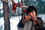 Nenets reindeer herdsman Vashya Prokofiev, eating raw reindeer meat, Kánin Peninsula, Russia, Arctic