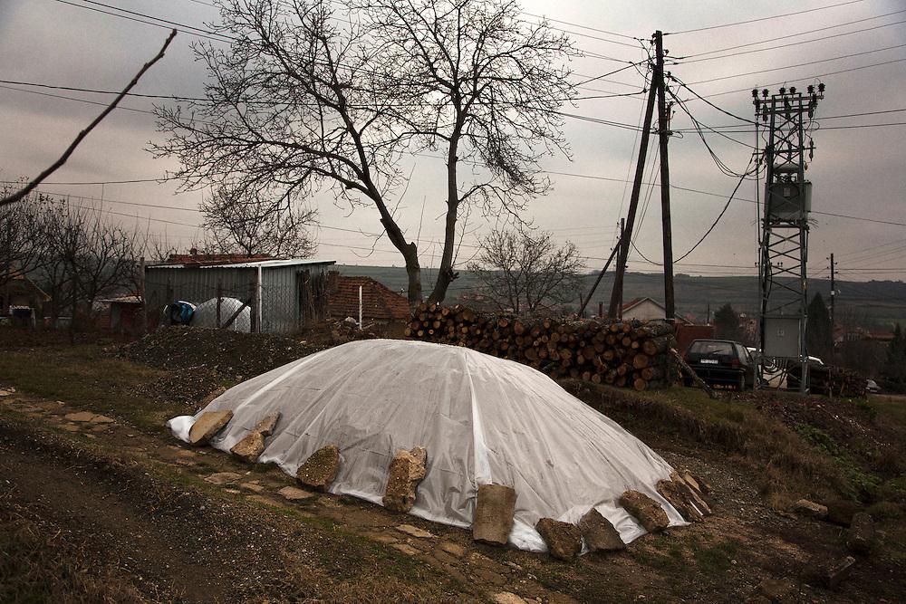 A garden prepared for winter in the Serbian enclave of Gracanica, Kosovo. December 2010.