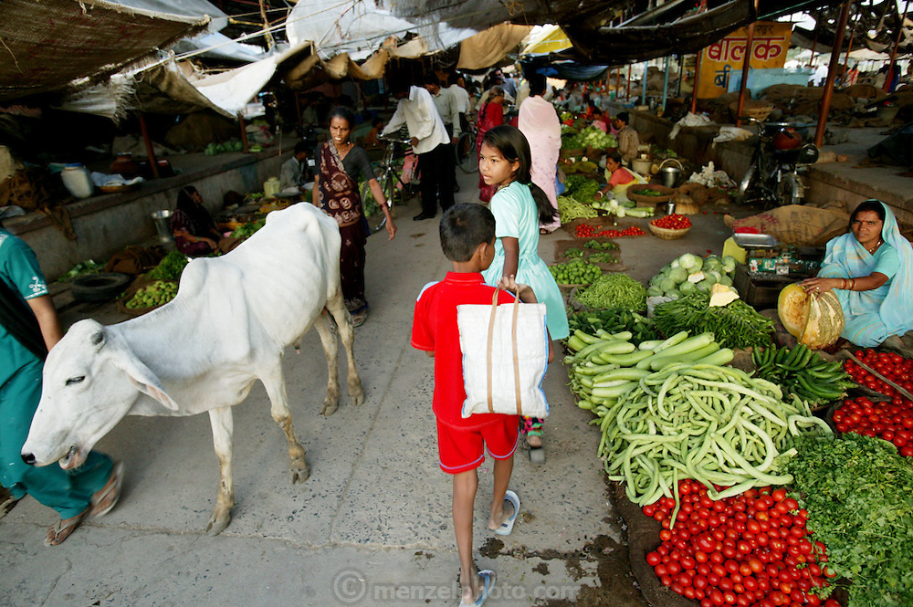 Shoppers and sales people in the produce section of the Ujjain municipal market. (Supporting image from the project Hungry Planet: What the World Eats.) Grocery stores, supermarkets, and hyper and megamarkets all have their roots in village market areas where farmers and vendors would converge once or twice a week to sell their produce and goods. In farming communities, just about everyone had something to trade or sell. Small markets are still the lifeblood of communities in the developing world.