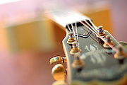Guitar Abstract close up on white background,