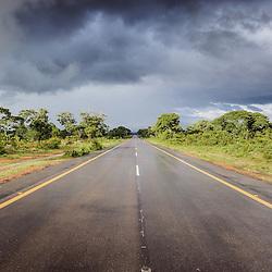 No Planalto Central de Angola, na estrada entre Benguela e Lubango depois de uma boa chuva de verão. Huíla. Angola