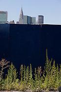 New York green NY611A