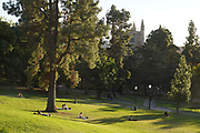 People lounge on the lawn observing social distancing near Royce Hall and the Powell Library on the campus of University of California, Los Angeles, Thursday, Dec. 3, 2020, in Los Angeles.
