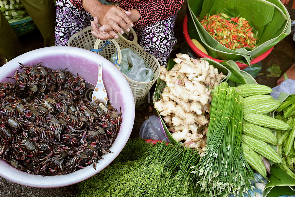 A vendor selling small crabs, ginger, ferns, red chillies and other vegetables at Phsar Kandal morning market in Phnom Penh, the capital city of Cambodia. A large variety of local products are available for sale in fresh markets all over Cambodia, all being sold on small individual stalls.