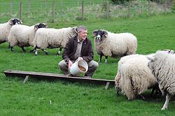 Willie Rennie, Kelty, 21-4-2017<br /> <br /> Willie Rennie feeds some sheep<br /> <br /> (c) David Wardle | Edinburgh Elite media