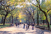The Mall, Central Park, Manhattan, New York