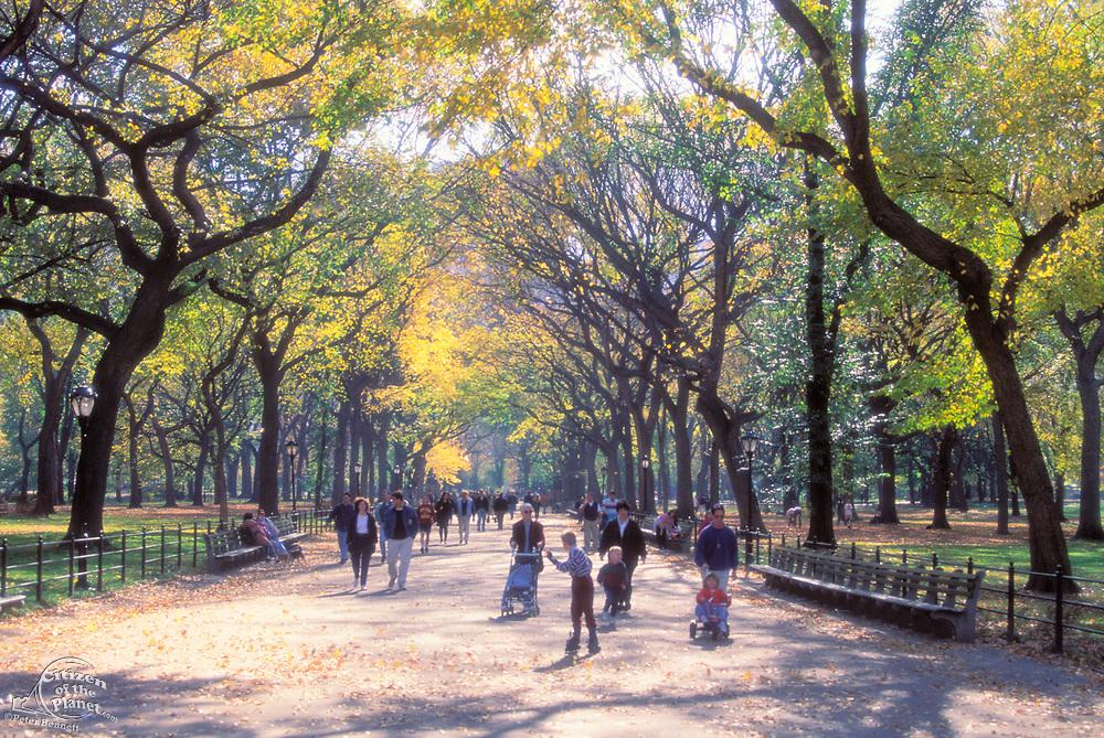 The Mall, Central Park, Manhattan, New York