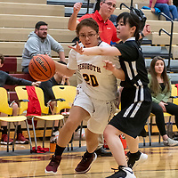 Photo: Jeffery Jones<br /> <br /> Rehoboth Lady Lynx Gwen Rivas (20) forces her way around Menaul School's Rizu Dishi (12) during Saturday's varsity girls basketball game at Rehoboth Christian School.