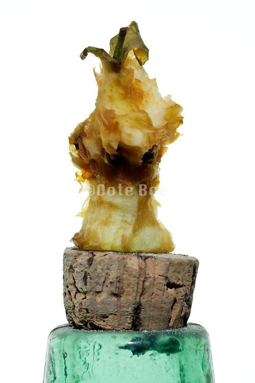 eaten apple core on corked bottle top