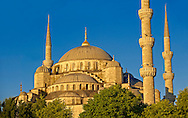 The Sultan Ahmed Mosque (Sultanahmet Camii) or Blue Mosque, Istanbul, Turkey. Built from 1609 to 1616 during the rule of Ahmed I. <br /> <br /> If you prefer to buy from our ALAMY PHOTO LIBRARY  Collection visit : https://www.alamy.com/portfolio/paul-williams-funkystock/blue-mosque-istanbul.html<br /> <br /> Visit our TURKEY PHOTO COLLECTIONS for more photos to download or buy as wall art prints https://funkystock.photoshelter.com/gallery-collection/3f-Pictures-of-Turkey-Turkey-Photos-Images-Fotos/C0000U.hJWkZxAbg