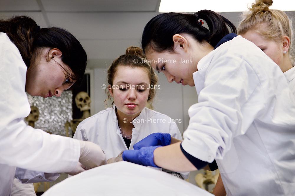 Nederland, Amsterdam , 2 februari 2015.<br /> Studenten geneeskunde aan het werk in de snijzaalSnijzaal van de Medische faculteit aan de van der Boechorststraat 7 (faculteit geneeskunde)<br /> Foto:Jean-Pierre Jans
