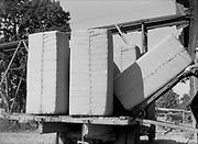 9969-2037. Bales of hops being loaded on a truck. September 9, 1935. Riverside Hop farm, owned by A.J. Ray and Son, Inc., Newberg, Oregon.