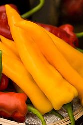 Sweet pepper 'Ringo'
