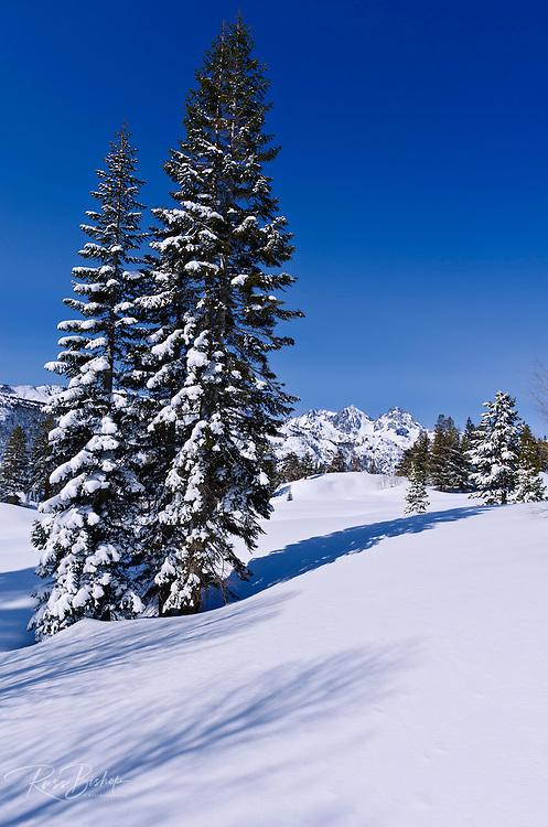 Backcountry skiing in the Ansel Adams Wilderness, Sierra Nevada Mountains, California USA