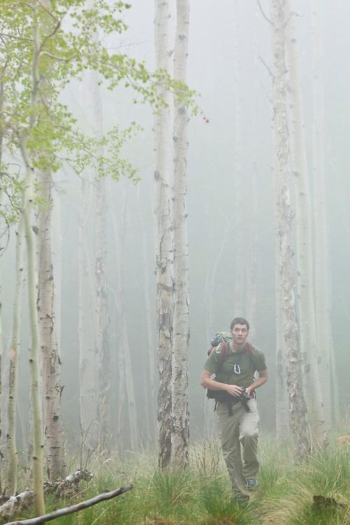 Obadiah Reid hikes through an aspen grove in fog along the Hankins Pass Trail, Lost Creek Wilderness, Colorado.