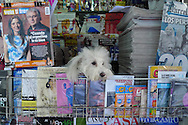 Newstand in Buenos Aires, Argentina on December 31, 2010.