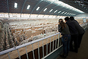 Tourists view infantry figures from the edge of Pit 1 at Qin Museum, exhibition halls of Terracotta Warriors, China
