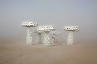 Shrumen Lumen from: San Francisco, CA year: 2016<br /> <br /> Shrumen Lumen is a garden of oversized mushrooms, made of folded geometry that allows their bodies to undulate in various patterns. Building off a similar aesthetic and folding strategy as Blumen Lumen, a garden of flowers on the Playa in 2014, the new garden aims to have a more significant kinetic movement and improved lighting. People will be able to interact with the mushrooms and affect how they move simply by being present in the sculpture garden. At night, the flowers light up internally and will react to the sounds around them. Contact: jimmychion@gmail.com