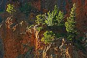 Sinclair Canyon <br /> Kootenay National Park<br /> British Columbia<br /> Canada