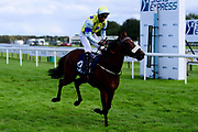Jungle Boogaloo ridden by Jason Watson and trained by Gary Moore ridden in the Visit valuerater.co.uk For Free Tips Classified Stakes - Mandatory by-line: Ryan Hiscott/JMP - 24/08/20 - HORSE RACING - Bath Racecourse - Bath, England - Bath Races