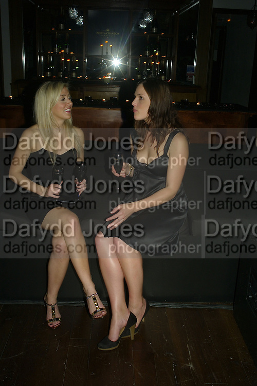 MALENA HARBERS AND CARLA JOHNSTON, Lucy Yeomans Editor of Harper's Bazaar and Moet and Chandon host the Gold Party. 17 Berkeley St. London W1. 1 November 2007. -DO NOT ARCHIVE-© Copyright Photograph by Dafydd Jones. 248 Clapham Rd. London SW9 0PZ. Tel 0207 820 0771. www.dafjones.com.