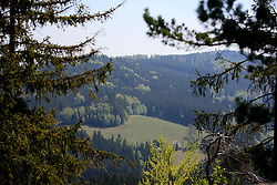 CZECH REPUBLIC VYSOCINA APR09 - View into a valley near Ceske Milovy in the nature reserve of Zdarske Vrchy, Vysocina, Czech Republic...jre/Photo by Jiri Rezac..© Jiri Rezac 2009