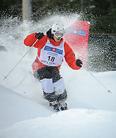 CANADA POST FREESTYLE GRAND PRIX, FIS WORLD CUP, CYPRESS MOUNTAIN, VANCOUVER, BRITISH COLUMBIA, CANADA - Mens Moguls , Jesper Bjoernlund (SWE): Photo by Peter Llewellyn