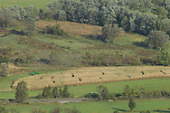Vernon, New Jersey - A view of a corn maze from Pinwheel Vista on Wawayanda Mountain on Sept. 22, 2012. Route 94 is on the bottom of the frame.