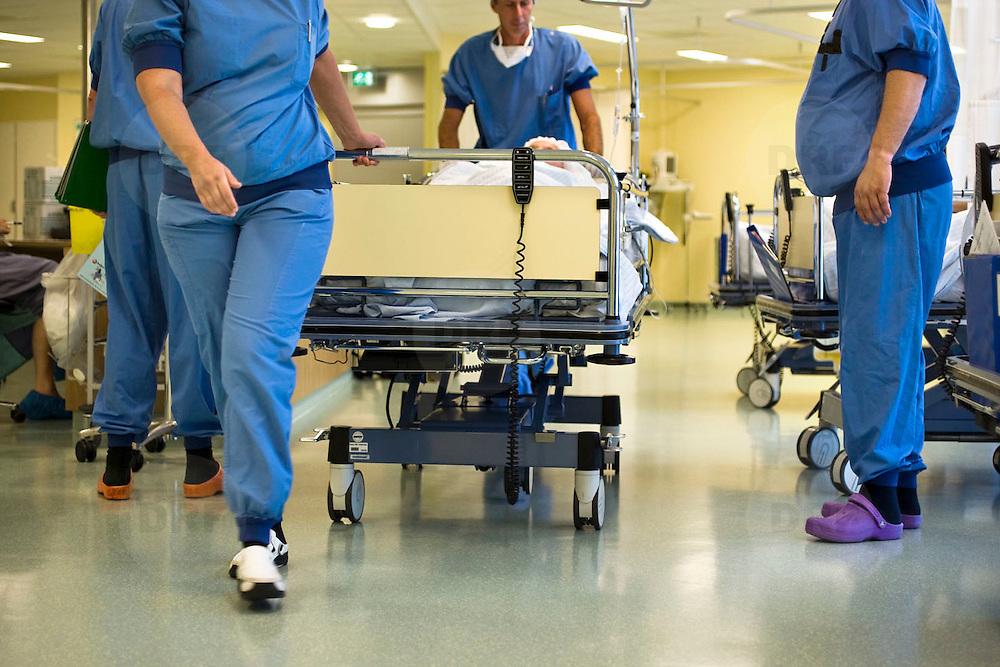 Nederland Rotterdam 25-08-2009 20090825 Foto: David Rozing ..Serie over zorgsector, Ikazia Ziekenhuis Rotterdam. Een verpleegkundige controleert een patient op de recoveryroom, dit is een zaal waar patienten na een operatie verzorgd worden. Patient is being checked by doctor, in recovery room. ziekenzaal, op zaal liggen Holland, steriel, steriele omgeving, werkkleding, kledingvoorschriften, The Netherlands, dutch, Pays Bas, Europe, professionele, professional, , steriel, steriele omgeving, werkkleding, kledingvoorschriften,verpleegster, verpleegsters, verpleger, verplegers, verplegend,status ..Foto: David Rozing