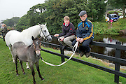 15/08/2013. Lorcan Glynn and David Connaughton from Athlone with Caoran Beg Realtin and her foal at the 90th Connemara Pony show in Clifden Co. Galway. Photo:Andrew Downes