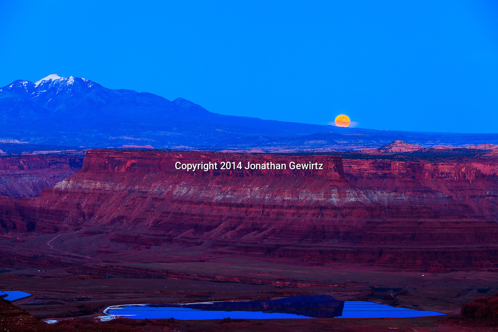 The full moon rises behind the La Sal mountains, over red rock cliffs in the Colorado River Plateau as seen from Dead Horse Point State Park near Moab, Utah.<br /> <br /> WATERMARKS WILL NOT APPEAR ON PRINTS OR LICENSED IMAGES.<br /> <br /> Licensing: https://tandemstock.com/assets/86841848