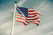 US Flag (variations)